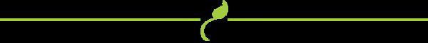line-separator-green_zps8e704a6c